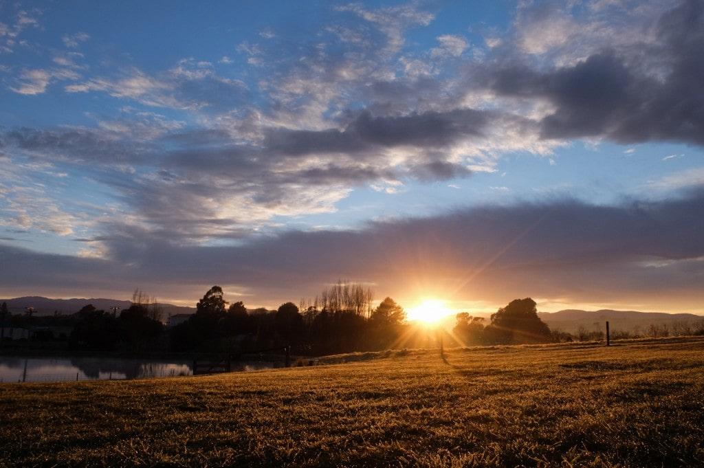 The morning dusk ...