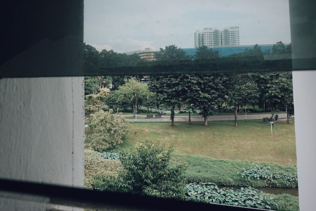 Great view and fresh air from Bishan Park